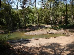 Dry Creek Off Channel Rearing Habitat