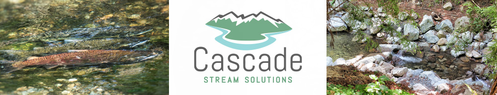 Cascade Stream Solutions