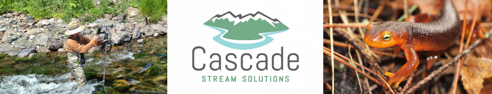 Cascade Stream Solutions